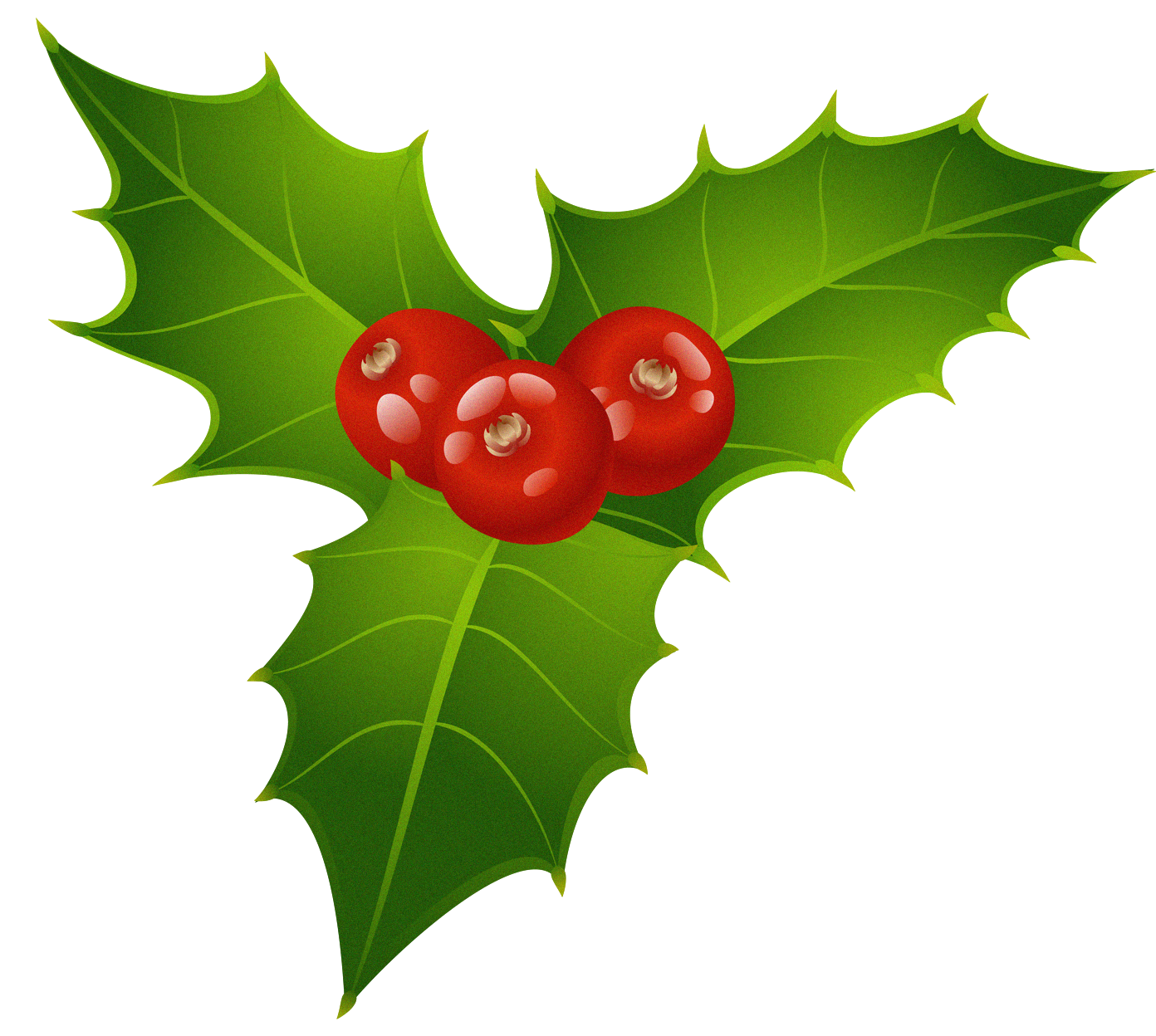Christmas_Mistletoe_PNG_Clipart - Spare Time